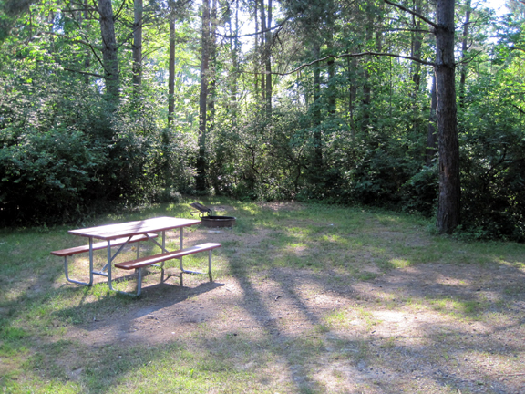 The Campsites Are Wooded Well Spaced And Have Picnic Tables Grills And Electricity Hamlin Beach State Park
